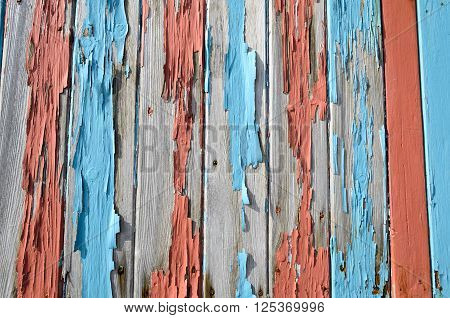 Wood grungy texture with flaked blue and red paint