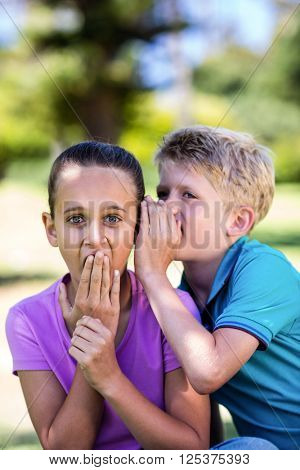 Boy whispering in his sisters ear in park