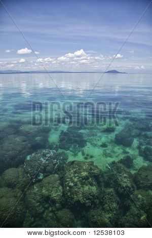 Exotic Landscape With Coral Reef
