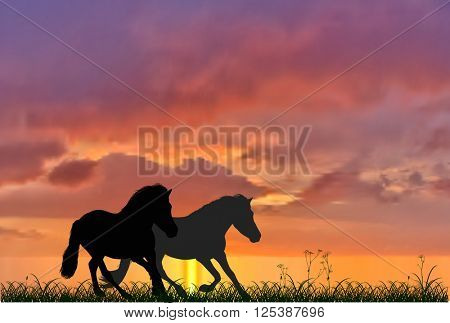 illustration with two running horses on sunset background
