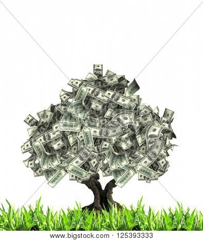 3d money tree with dollar banknotes and green grass. Isolated on white background