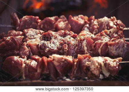 Shashlyk On Grill