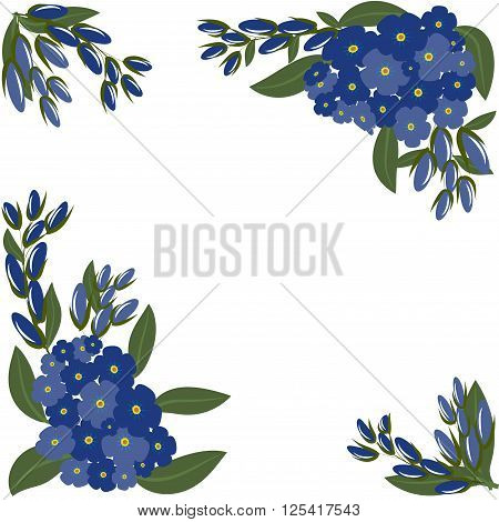 Forget-me-nots with leaves isolated on white background. Spring or summer design for background  or invitation, wedding or greeting cards, isolated on white background, vector illustration