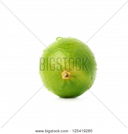 Lime green fruit covered with the multiple water drops, isolated over the white background