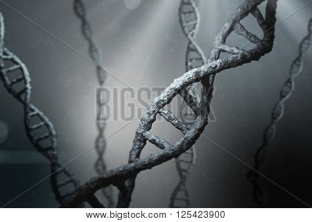 View of dna