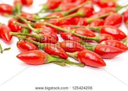 Heap Of Ripe Red Peppers Piri-piri