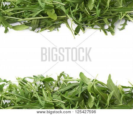Eruca sativa rucola arugula fresh green rocket salad leaves aligned as a copyspace background composition isolated over the white background
