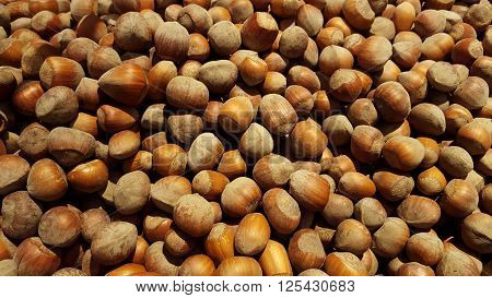 Fresh little hazelnuts in a store