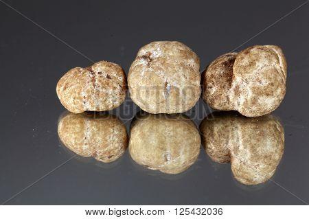 White truffles of the species tuber oligospermum.