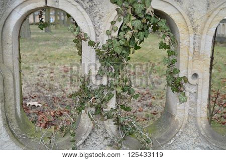old wall with arches and ivy at park sanssouci potsdam