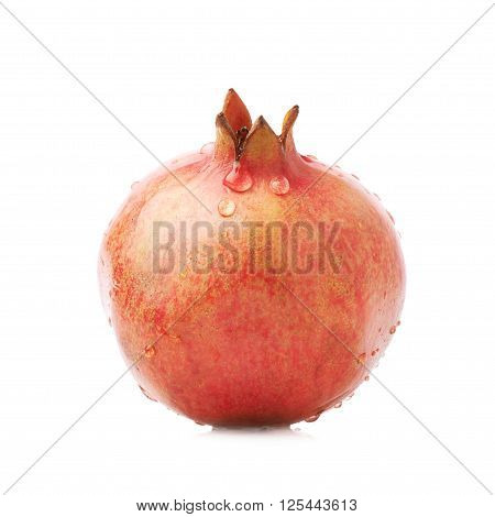 Pomegranate punica granatum fruit covered with multiple water drops isolated over the white background