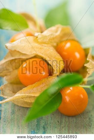 Close-up of Physalis fruits on wooden background.