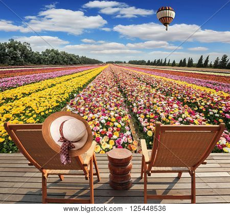 Great multi-colored balloon flies over flower field.  Israeli kibbutz on the border with Gaza Strip.  Two chaise lounges standing on wooden platform
