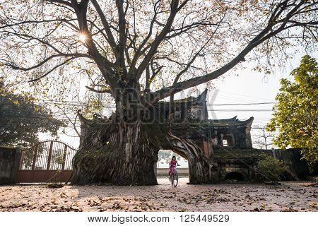 VINHPHUC, VIETNAM, APRIL 10, 2016: Children play near an ancient gate in a village in Vinh Phuc province, Vietnam. Village gate is a specific of Northern country side in Vietnam.