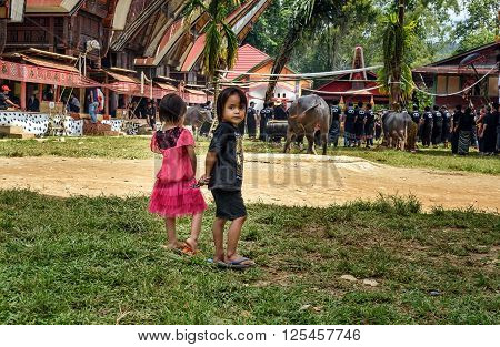 Two Children Look At The Funeral Ceremony. Tana Toraja