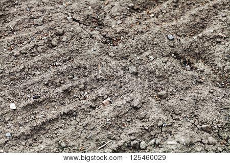 Arable Soil Of Vegetable Garden