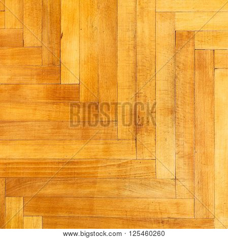 square background from light varnished oak wood parquet
