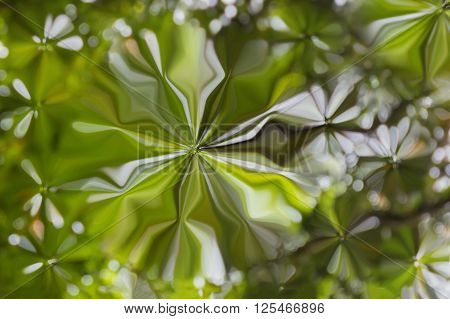 Colourful Spark And Blow Lovely Fantasy Mood Abstract Sweet Cheerful Green Background