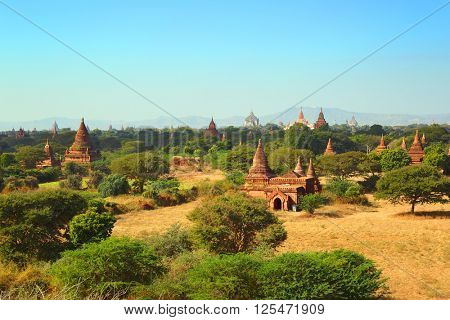 Landscape with Temples in Bagan, Myanmar (Burma)
