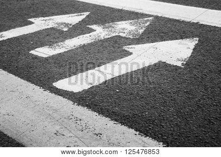 Pedestrian Crossing Road Marking, White Arrows