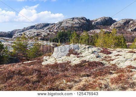 Norwegian Mountain Landscape With Rocks