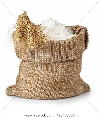 burlap bag of whole flour with bunch of wheat isolated on white background