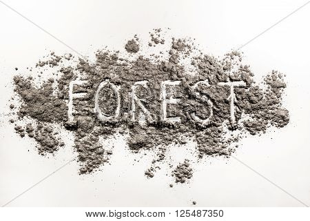 Word forest written in splattered grey ash