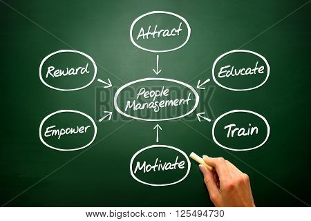 People Management Flow Chart Vector Concept, Diagram Shapes On Blackboard..