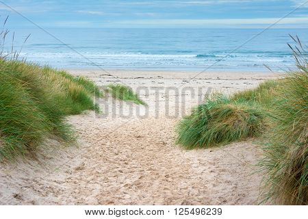 Footpath through sand dunes to the sea with blue sky ahead