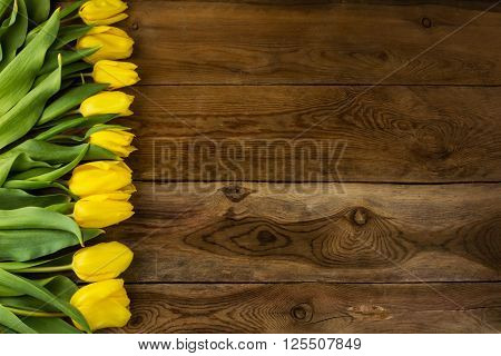 Yellow tulips bunch on wooden background. Spring flowers. Flowers greeting. Flowers postcard