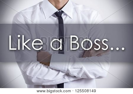 Like A Boss... - Young Businessman With Text - Business Concept