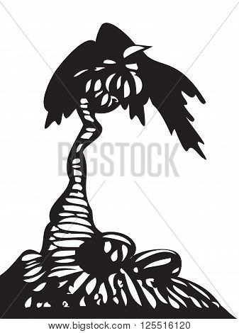 Palm tree with coconuts isolated on white background. Coconuts on the ground. Black and white colors. Vector illustration