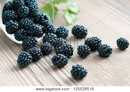 Blackberries in bowl on wooden background. Selective focus high resolution product. Harvest Concept