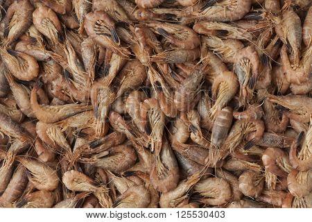 Unpeeled brown shrimps full frame