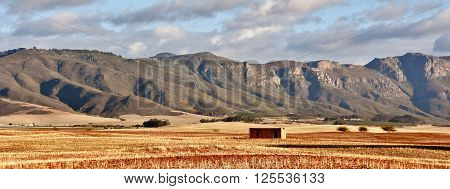 Rural Landscape with dry farm land and mountains