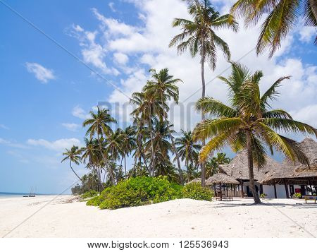 Any beach on a beach in Paje on Zanzibar Tanzania.