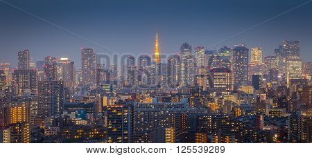 Tokyo city view with Tokyo tower in twilight