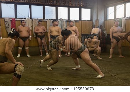 Tokyo, Japan - December 21, 2014: Japanese sumo wrestler training in their stall in Ryogoku district.