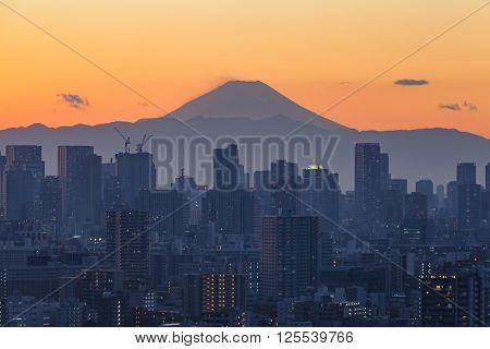 Mount Fuji and Tokyo city view in sunset time ** Note: Soft Focus at 100%, best at smaller sizes