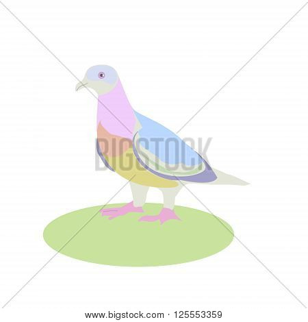 dove vector illustration bird living next to a man