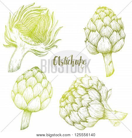 Beautiful image with nice hand drawn graphic artichoke