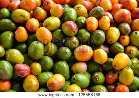 Pile of jocote fruits aka mombin hog plum and sineguela sold at a local fresh market in San Jose Costa Rica