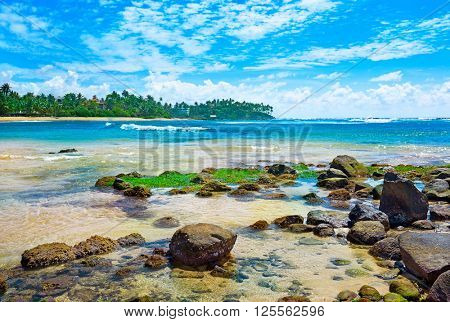 magnificent landscape of the tropical sea