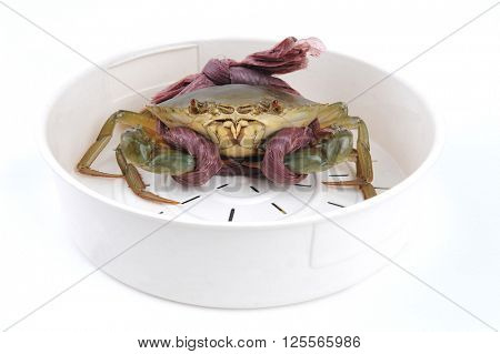 Fresh Raw Crab