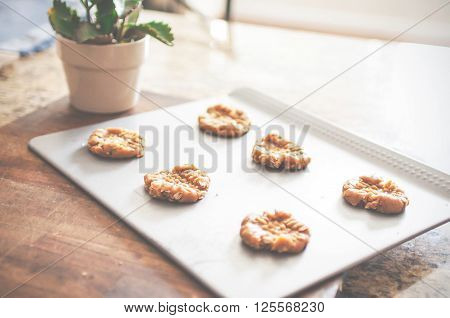 Peanut butter cookies and plant on wooden cutting board