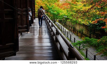 People Enjoy Autumn Leaves Near Eikando Temple