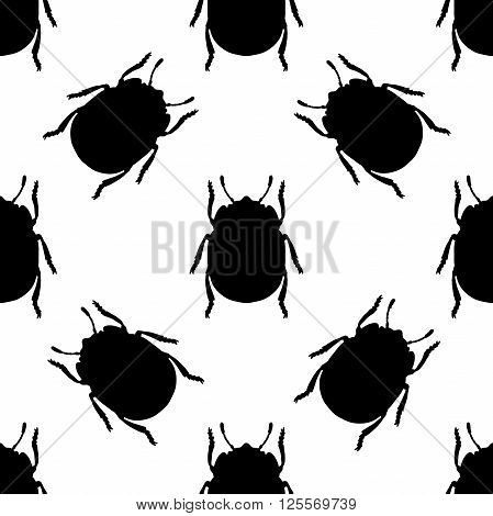 Seamless pattern with colorado potato beetle. Leptinotarsa decemlineata.   colorado beetle.  hand-drawn colorado beetle. Vector illustration