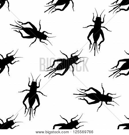 Seamless pattern with cricket or grig. Gryllus campestris.    hand-drawn cricket. grig. . Vector illustration