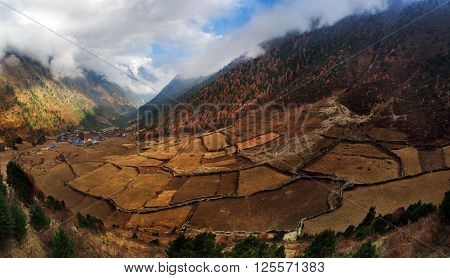 The rice fields in the foothills of Nepal