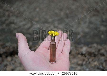 Flower  In  Cartridge-case